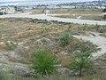 Kamyshin, Volgograd Oblast, Russia - panoramio (60).jpg