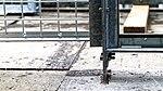 Katzenauslauf auf der Terrasse 04.jpg