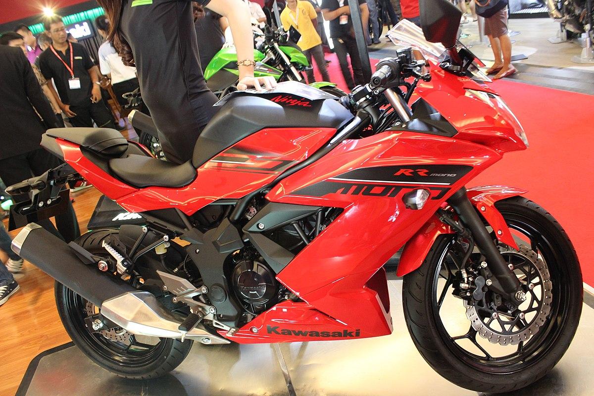 Kawasaki Ninja Sl Rr Mono