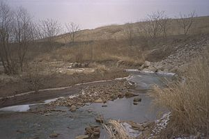 Superfund - Polluted Martin's Creek on the Kin-Buc Landfill Superfund site in Edison, New Jersey