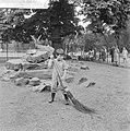 Kinderen brengen vakantie door in stad. Helpen in Artis, Bestanddeelnr 912-7947.jpg