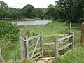 Kissing Gate near Eridge Lake - geograph.org.uk - 1412031.jpg