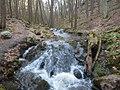 Kittatinny Mountain Tillmans Ravine Walpack Township.jpg