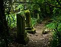 Kozma Street Jewish cemetery 56514336.jpg