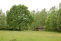 Kreis Pinneberg, Naturschutzgebiet Liether Kalkgrube 23.jpg