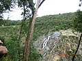 Kuranda QLD 4881, Australia - panoramio (15).jpg
