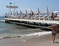 La Croisette.Cannes - panoramio - Javier Branas (1).jpg