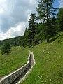 La Magdeleine (Italy) 2013 abc4.jpg