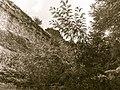 La rocca di Castrocaro da dietro-2.jpg