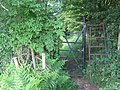 Ladder Stile in Lullingstone Country Park - geograph.org.uk - 1355406.jpg