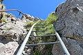 Ladders up the Tour d'Aï (14487231244).jpg