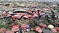 Lagos Hustle.jpg