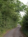 Lane past Taunton Deane services - geograph.org.uk - 1383942.jpg