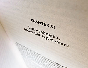 "Richard Dawkins bibliography - French translation of The Selfish Gene (chapter 11: ""Memes: the new replicators"")."