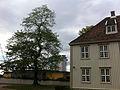 Lerchendal and Lerkendal.jpg