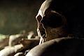 Les Catacombes, Skulls 01.jpg
