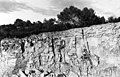 Les capitelles des garrigues gardoises - Raymond Martin et Bruno Fadat - 1992 (page 11 crop).jpg