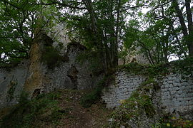 Ruins of the medieval castle