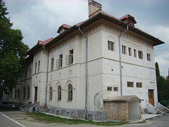Constantin Dobrescu-Argeș - Dobrescu-Argeș Agricultural High School in Curtea de Argeș