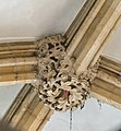 Lincoln Cathedral Consistory Court roof boss, South eastern (40215450882).jpg