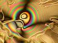 Liquid crystal textures - free standing film 2.jpg