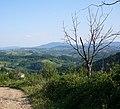 Lukavica - panoramio.jpg
