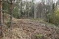 Mākoņkalna pagasts, Latvia - panoramio - BirdsEyeLV.jpg