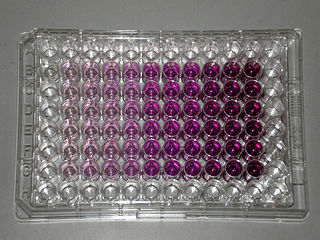 MTT assay The MTT assay is a colorimetric assay for measuring the activity of cellular enzymes that reduce the MTT