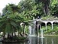 Madeira - Monte - Jardim Tropico (2092627895).jpg
