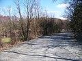 Malešov, silnice 3378 a rybník Prosík.jpg