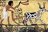 Der Maler Grab des Sennudem 001.jpg