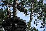 Marines soar through the trees during Operation Adrenaline Rush 150709-M-RH401-033.jpg