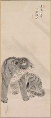 Tiger in Wind and Rain