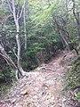Mayasancho, Nada Ward, Kobe, Hyogo Prefecture 657-0105, Japan - panoramio (2).jpg