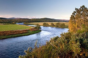 English: Meander on the River Dee just west of...