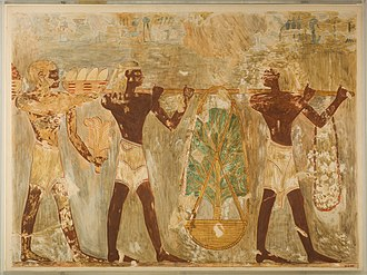 Land of Punt - Image: Men from Punt Carrying Gifts, Tomb of Rekhmire MET 30.4.152 EGDP013029
