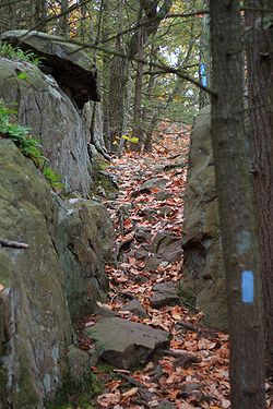Metacomet Trail near Rattlesnake Mountain, October 24, 2007.jpg