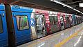 Metro Rio 01 2013 5410.JPG