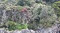 Milford Sound, South Island (483080) (9485264896).jpg