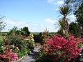 Millennium Garden, Auchencairn - geograph.org.uk - 802827.jpg