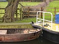 Mink at Rhodesfield Lock on the Ripon Canal - geograph.org.uk - 355317.jpg