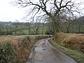 Minor road to Lower Luxton - geograph.org.uk - 1185119.jpg