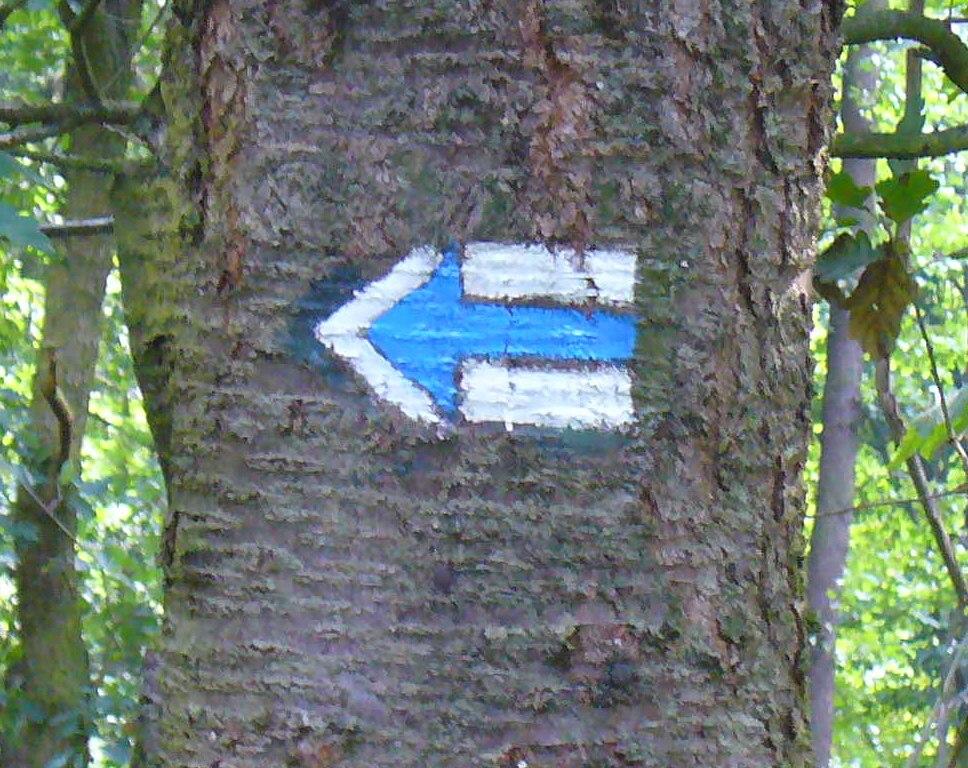 Modra turisticka trasa značka-šipka doleva