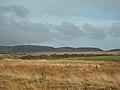 Moorland Woods - geograph.org.uk - 351845.jpg