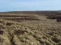 Moorland at the head of Hirddu Fach - geograph.org.uk - 1238712.jpg