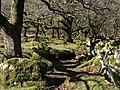 Moorland edge southwest of Leighon - geograph.org.uk - 1232635.jpg