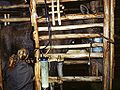 Moose-Machine-Milking-ss87-810.jpg