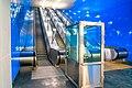 MosMetro Nizhegorodskaya (2020-01) - escalators in blue zone 1.jpg