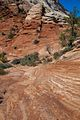 Mottled landscape in Zion National Park (8078508262).jpg
