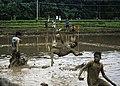 Mud football Kinassery Kerala India3.jpg